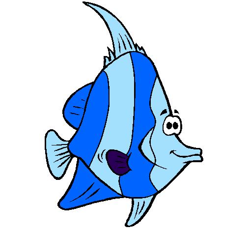 Disegno pesce tropicale colorato da utente non registrato for Disegni da colorare pesci tropicali