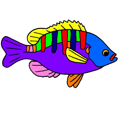 Disegno Pesce Colorato Da Utente Non Registrato Il 23 Di Marzo Del 2009