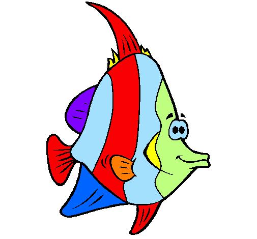 Disegno Pesce Tropicale Colorato Da Utente Non Registrato Il 30 Di