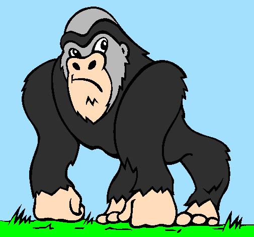 Il gioco del gorilla