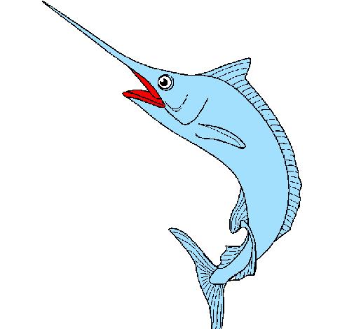Disegno Pesce Spada Colorato Da Utente Non Registrato Il 31 Di