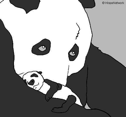 Disegno Orso Panda Con Il Suo Cucciolo Colorato Da Utente Non