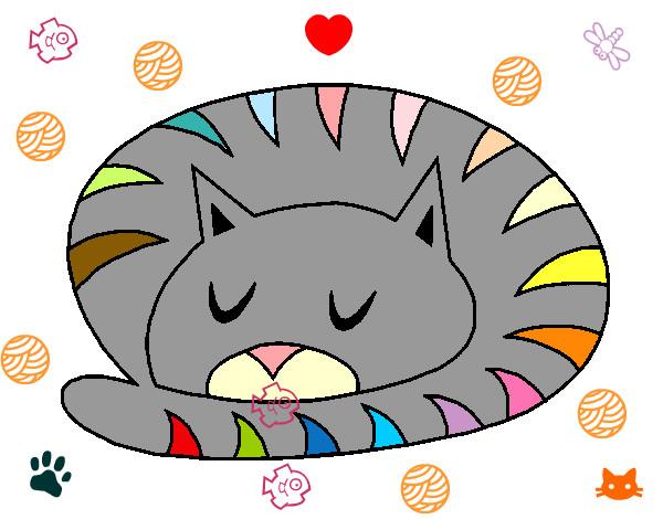 Disegno Gatto Che Dorme Colorato Da Baraldilau Il 18 Di