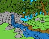 Disegni Di Natura Paesaggi Colorati Dai Nostri Utenti